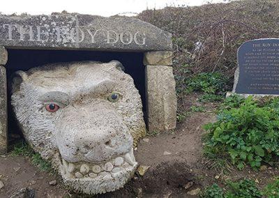 the-roy-dog