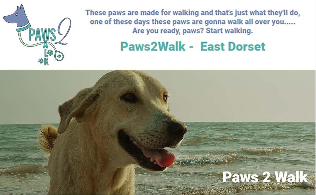 Free dog walking for NHS workers in Corfe Mullen/Wimborne area